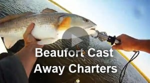 Beaufort Castaway Fishing Charters Videos
